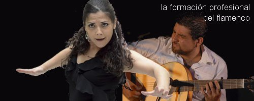 Flamenco courses