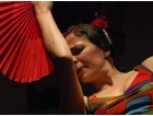 Three-Month Flamenco Dance