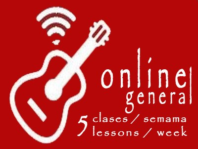 General Guitar 5 lessons/week ONLINE