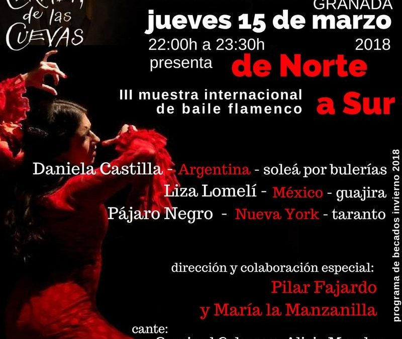 De Norte a Sur: III International Flamenco Dance Exhibition (This entry will be translated shortly)